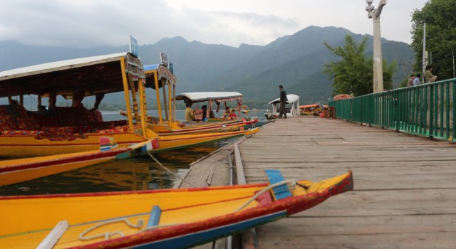Glimpses of Dal Lake